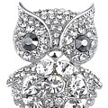 Bright Eyes Owl Brooch