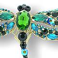 Mistress Aqua Dragonfly Brooch
