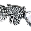 Silver Tiger Bright Knuckle Duster