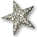 You're a Star Brooch