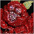 Roses are Red Brooch